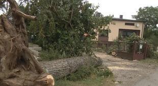 Zerwane dachy, połamane drzewa