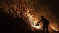 Pożary szaleją w Kalifornii (PAP/EPA/ETIENNE LAURENT)