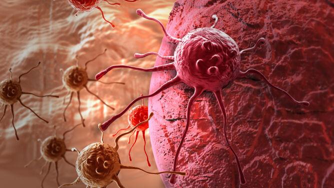 Tłuszcz może pomagać w rozprzestrzenianiu się raka