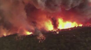 Pożary australijskiego buszu